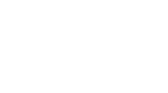 Logo solo scritta bianco